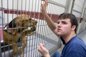 Alternative Spring Break volunteer Danny Pellerin '12 gives attention to a dog inside The Humane Society in Gulfport, Mississippi. Staff Photo: Kris Snibbe/Harvard News Office